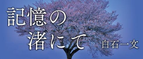 (「記憶の渚にて」白石一文)