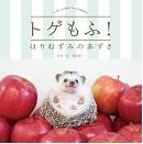 <本日発売!>世界で一番人気のハリネズミ。あずきくん初めての写真集!