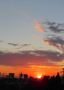 【連載第52回】東田直樹の絆創膏日記「夕焼け空が怖かった」