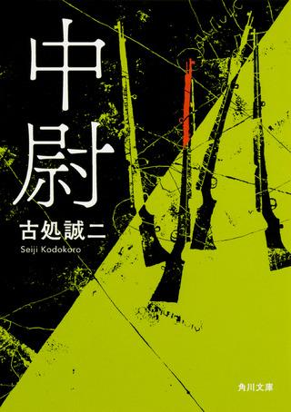 """あの古典『ビルマの竪琴』を相対化する、まったく新しい戦争小説の誕生。"""""""